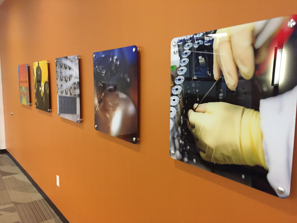 Wall graphics designed and installed by Bennett Graphics in Pleasanton